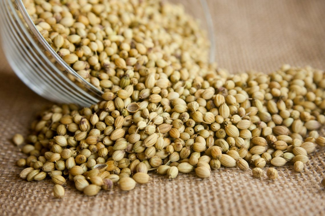 All About Oils: Coriander Seed -